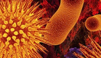 Beneficios de la Naturopatía para la salud del cuerpo